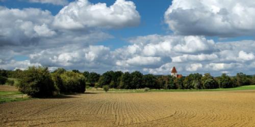 Ein idyllischer Weg zwischen Feldern auf dem Land